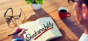 How to Make your Employees Passionate About Sustainability