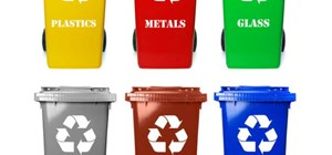 3 Reasons Every Business Should Adopt Sustainable Waste Solutions